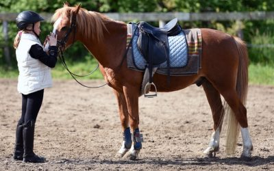 Incredible Benefits of Horseback Riding