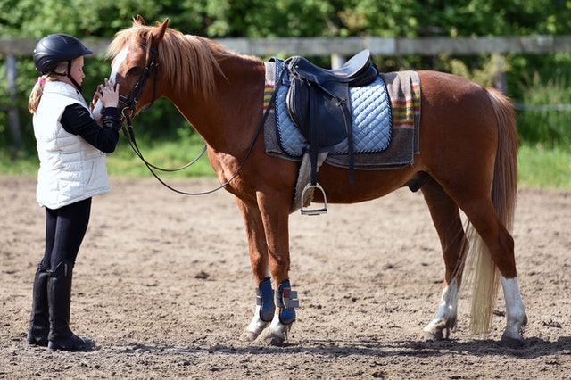 Incredible Benefits of Horseback Riding